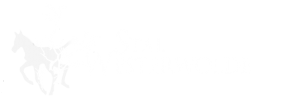 Stal Westerwolde – Vakantie appartement en E-Choppers